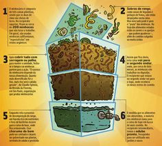 Conheça a compostagem, um jeito simples de reciclar o lixo orgânico em casa, transformando os resíduos em um rico adubo para as plantas!