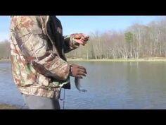 berkley #powerbait trout bait - #various #colours, view more on, Fly Fishing Bait