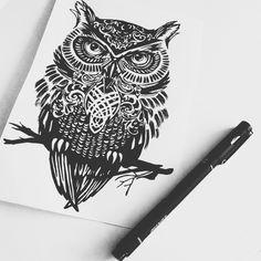 Little owl :)
