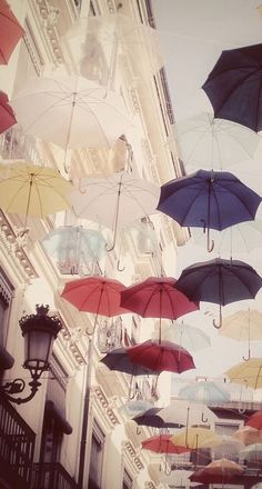 Umbrellas . Wallpaper