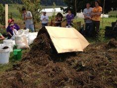 Hortaliza sana en terreno sano. Receta casera de composta ... ¿Cómo prepararla? Problemas y soluciones.