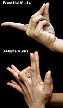 Yoga Therapy: Yoga for Asthma and Bronchia Problems  Bronchial & Asthma Mudra