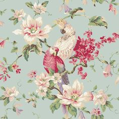 Wallpaper Designer Parrot & Cockatoo Tropical Magnolia Floral Blue Background | Home & Garden, Home Improvement, Building & Hardware | eBay!