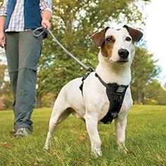 Kurgo Tru-Fit Smart Dog Walking Harness with Plastic Quick Release Buckles