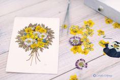 Flores prensadas, via Flickr.