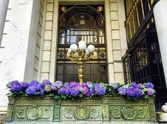 The Plaza is a luxury hotel in Manhattan, New York. Beautiful plants and flowers inside and out.