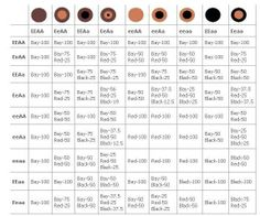 Horse color chart