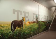 Huge wall image, subtle type interacting with photo. Silver Fern Farms signage by Designworks.