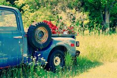 blue pickup truck in the grass - (Robert Wojtowicz photography)