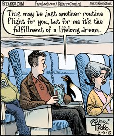 Home of Bizarro by Dan Piraro, a single-panel comic strip making people laugh for over 30 years. Penguin Life, Penguin Art, Penguin Quotes, Science Penguin, Penguin Parade, Penguin Pictures, Funny Pictures, Bizarro Comic, Penguin Cartoon