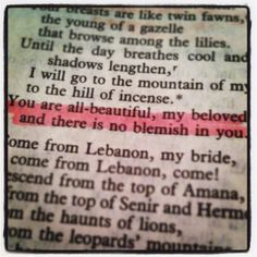 Song of Songs 4:7 Trust the Bible.  *kls