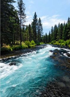 Fishing on the Deschutes, National Forest, Deschutes,Oregon. Places To Travel, Places To See, Oregon Travel, Travel Portland, Destinations, Road Trip Usa, Plein Air, National Forest, Vacation Spots
