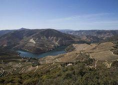 Carrazeda de Ansiães: entre os rios Douro e Tua