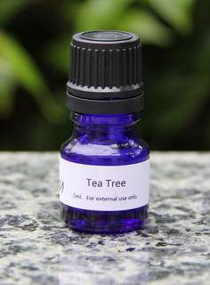 Tea Tree essential oil - a MUST in all households. Diffuse in the air to control germs and mold, use on the skin in blends for acne, rashes and infections.