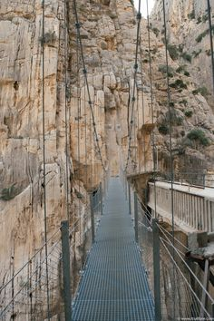 Its All Bee: El Caminito Del Rey | Hiking Spain's Most Dangerous Hiking Trail