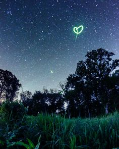 Dream-Like Pictures Of Firefly Light-Trails Captured Using Long-Exposure Photography Firefly Photography, Time Lapse Photography, Photography Ideas, Exposure Photography, Photography Tutorials, Taking Pictures, Cool Pictures, Cool Photos, Owl City Fireflies
