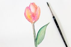 How to paint a watercolor tulip