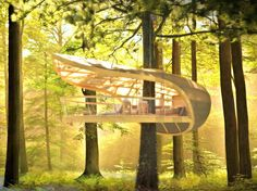 Perfect Getaway Space In This Amazing Tree Houses - Creativeresidence