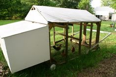 chicken tractor on the cheap Buff Orpington, Rhode Island Red, Portable Chicken Coop, Coops, Picture Design, Farm Life, Tractor, Homesteading, Cute Pictures