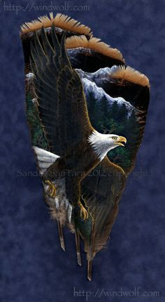 Bald Eagle painted on turkey feathers.