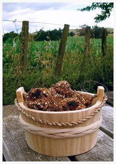 When is the last time you did something nice--really nice--for your four-legged partner? Doesn't your horse deserve something special after carrying you around and doing what you ask (most of the time!) day after day? I think it's time to make your trusty steed some homemade horse cookies. Don't settle for the store-bought version and pay for horse treats that are often stale and expensive. I tried all the popular recipes I could find and with a little tweaking came up with the ...