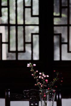 Tea Room - Pinjiang Road, Suzhou, China