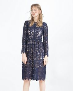 Zara navy lace dress