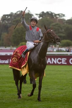 Treve and Tierre Jarnet win the Arc at  Longchamp, 6th October 2013
