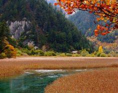 reed-lake-2