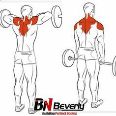 Shoulder & Traps Exercises Ejercicios de Hombro y Trapecios workouts for bodybuilders Fitness Workouts, Sport Fitness, Muscle Fitness, Mens Fitness, Fitness Tips, Fitness Motivation, Health Fitness, Exercise Motivation, Bodybuilding Training
