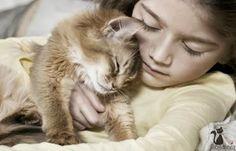 Blogateira: SUSPIROS DA GATEIRA: O Gato e a Espiritualidade