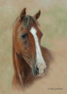 "Vicki Jackson - Fine Art Animal Portraits in Pastel - Artwork - ""Sir Callaghan"" Pony 36 x 48cm Pastel"