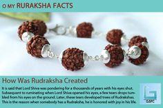 How Was Rudraksha Created