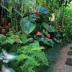 Garden design ideas tropical garden design ideas your oasis easy to grow bulbs garden design ideas Tropical Garden Design, Tropical Backyard, Vegetable Garden Design, Tropical Landscaping, Tropical Plants, Tropical Gardens, Landscaping Supplies, Backyard Landscaping, Landscaping Ideas