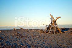 Dusk on Motueka Spit, Tasman, New Zealand Royalty Free Stock Photo Pool Dance, Abel Tasman National Park, New Zealand Beach, Turquoise Water, Beach Fun, Beach Photos, Image Now, Beautiful Beaches, Dusk