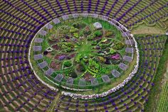 West Michigan Is Home to a Giant Lavender Labyrinth | Big enuf to be seen on Google Earth