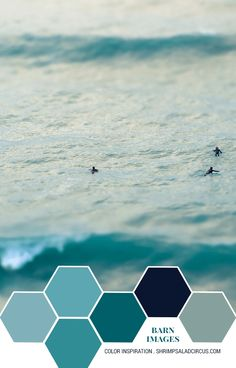 Color Inspiration - Everybody Was Surfing - Shrimp Salad Circus Beach Color Schemes, Beach Color Palettes, Living Room Color Schemes, Colour Schemes, Teal Grey Living Room, Navy Living Rooms, Bedroom Green, Teal And Grey, Navy Blue Color