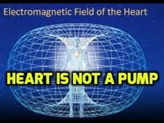 Dr. Cardio Fail! The Heart is NOT a Pump ~ Blood Vortici Pumps the Heart. - YouTube