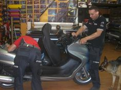 omega wrapping roma: Wrapping totale su scooter Yamaha Majesticeffetto ...