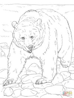 Grizzly bears Coloring pages. Select from 31983 printable Coloring pages of cartoons, animals, nature, Bible and many more. Bear Coloring Pages, Free Printable Coloring Pages, Adult Coloring Pages, Coloring Books, Coloring Sheets, Animal Drawings, Art Drawings, Motifs Animal, Wood Carving Patterns