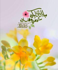 Eid, Ramadan, Plants, Plant, Planets