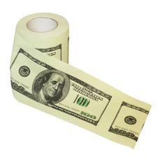 Dollar Bill Toiler Paper