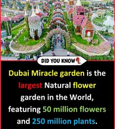 Amazing Places On Earth, Beautiful Places To Travel, Best Places To Travel, Cool Places To Visit, Wow Facts, Wtf Fun Facts, Random Facts, Random Stuff, True Interesting Facts