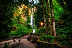 Multnomah Falls is a waterfall on the Columbia River in Oregon, the state in which more impressive waterfalls are situated. The fall drops into the pool in two steps, from 165 meters and then from 21 meters. It is the tallest waterfall in Oregon,