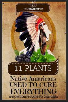 Cherokees believe that they were given herbs and plants by their Creator, gifts which allowed them to treat and cure illnesses and ailments�