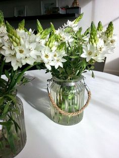 Ornithogalum on the kitchen table. Long lasting and quick to arrange.