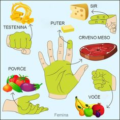 Koliko hrane treba unositi za jedan obrok: objašnjavamo pomoću šake. ~ Recepti i Ideje