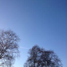 Lovely blue skies