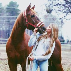 Basic Rules About Horseback Riding For Beginners - FashionActivation Cute Horses, Pretty Horses, Horse Love, Beautiful Horses, Clydesdale, Horse Senior Pictures, Horse Photos, Equine Photography, Animal Photography