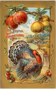 'A Joyful Thanksgiving to you' - vintage Thanksgiving Pictures, Vintage Thanksgiving, Vintage Fall, Thanksgiving Crafts, Vintage Holiday, Thanksgiving Decorations, Vintage Halloween, Fall Halloween, Thanksgiving Sayings
